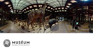 MNHN - GREAT GALLERY OF EVOLUTION IN 360°